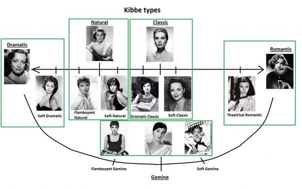 система координат тип внешности по Кибби